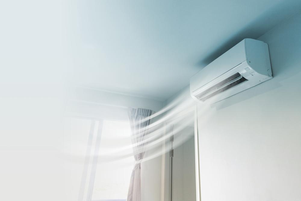 neutralizar la humedad